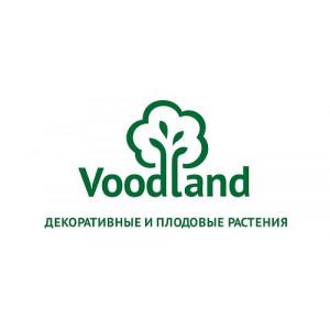 Блог Voodland